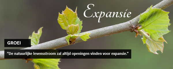 expansie